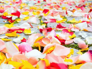 Ein Artikel über die Selbstliebe und die Erinnerungen
