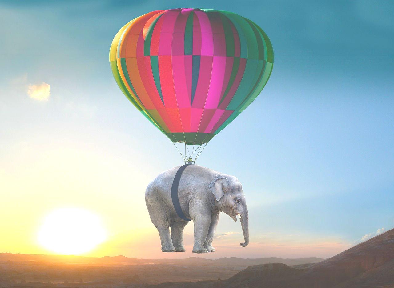 http://www.katharina-sieglinde-soreia-helmich.de/wp-content/uploads/2017/12/elephant-2605692_1280_NEU.jpg