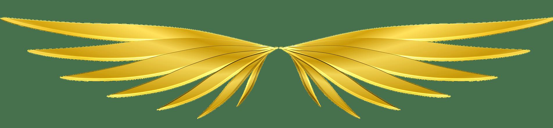 Fernenergetische, spirituelle Begleitung in die eigene goldene Mitte